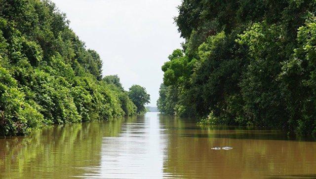В Техасе обнаружили тела четырех солдат, погибших в результате наводнения