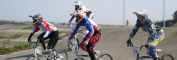 Соревнования по велоспорту BMX, посвященные памяти Г.С. Брикса