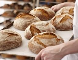 Гид по хлебу: самый вредный, полезный и вкусный