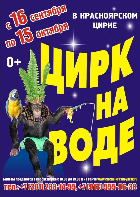 Красноярск где можно купить билеты в цирк концерт стаса михайлова стоимость билетов