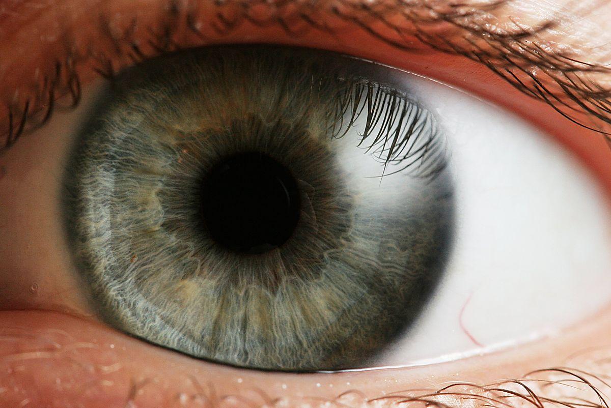 Картинки с живыми глазами