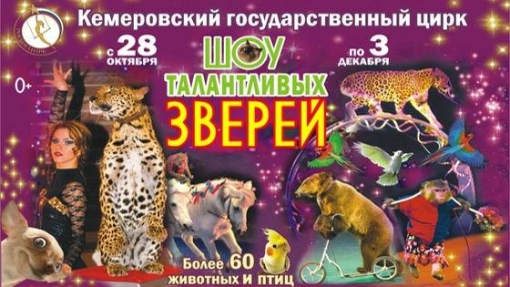 Цирк с животными купить билет оформление афиши для спектакля