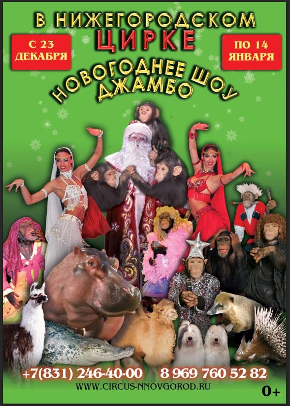 Купить билет в цирк в нижнем новгороде 2017 молодежный театр купить билет онлайн