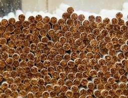 Исследование: российский рынок нелегальных сигарет продолжает быстро расти