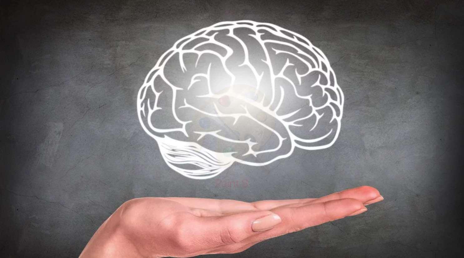 Церебральная мистика: мозг — это душа, компьютер или нечто большее?