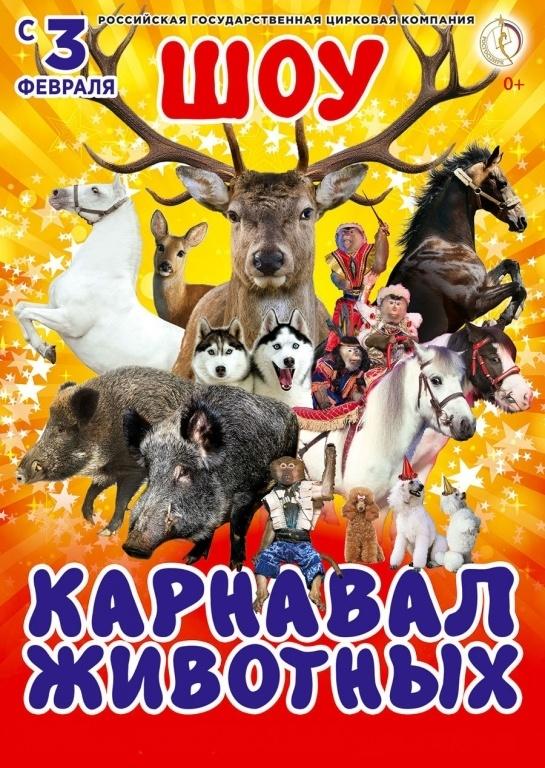 Купить билеты в цирк киров афиша театра бродячей собачки