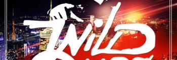 WildOnes | голографическое шоу