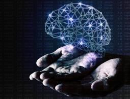 Ученые нашли еще один мозг в теле человека