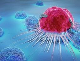 Найден способ избежать метастазов особо опасных видов рака