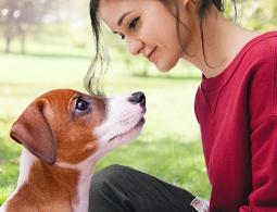 """""""Очеловечивание человека"""": почему собаки так хорошо понимают людей"""