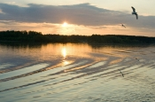 Ученые рассказали о падении солнечной активности
