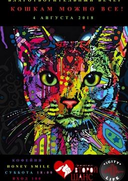 Кошкам можно все | Благотворительный вечер