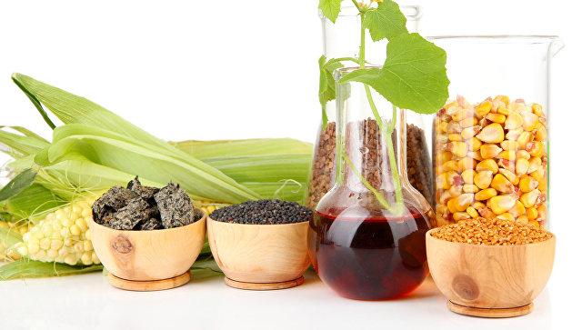 Биодизель, микродизель, нанодизель? Почему буксует зеленая энергетика