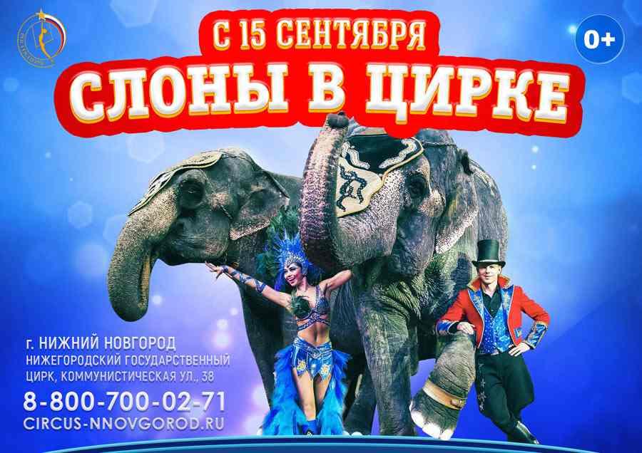 Нижегородский цирк где купить билеты омск театр драмы афиша на