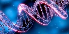 Ученые приблизились к созданию искусственной формы жизни