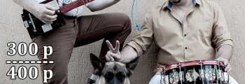 Собаки Качалова