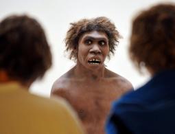 Свой среди своих: стало известно, почему обезьяна превратилась в человека