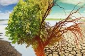 Климатическая бомба: кто первым развяжет ядерную войну из-за пресной воды
