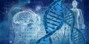 Пересчет человеческих генов поднял их число до 46 831
