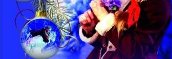 Сказка Рождественского леса | мюзикл