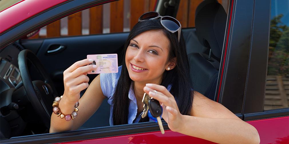 Жука гифка, картинки получение водительских прав