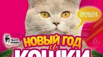 Новый год и кошки | В. Куклачёв