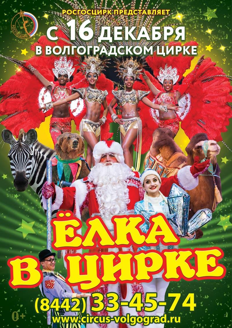 Купить билет на елку 2016 цирк розыгрыши билетов в кино волгоград