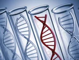 «Мусорная» ДНК оказалась эффективна в борьбе с раком
