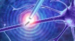 Новые пинцеты позволят ученым проводить биопсию живых клеток