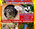 Джуманджи | Контактная выставка животных