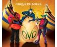 Цирк | CIRQUE DU SOLEIL