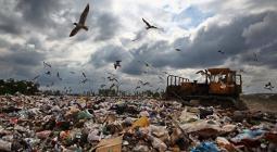 В России открылась горячая линия по вопросам переработки отходов