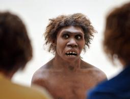 Генетики не нашли следов людей в ДНК последних неандертальцев Земли