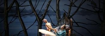 Балет СПЯЩАЯ КРАСАВИЦА | Новосибирский театр оперы и балета