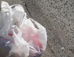 ОНФ предложил заменить пластиковые пакеты биоразлагаемой упаковкой
