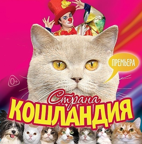 Страна кошландия | Московский театр кошек Ю.Куклачева